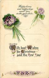 WITH BEST WISHES FOR CHRISTMAS AND THE NEW YEAR  violets