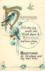 GREETINGS FOR CHRISTMAS AND THE NEW YEAR  blue-birds