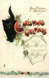 CHRISTMAS GREETINGS AND ALL GOOD WISHES FOR A HAPPY NEW YEAR  black cat & holly left