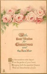 WITH BEST WISHES FOR CHRISTMAS AND THE NEW YEAR  pink roses
