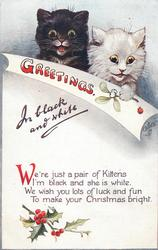 GREETINGS IN BLACK AND WHITE  black & white kittens, mistletoe & holly