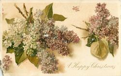 A HAPPY CHRISTMAS  lilac