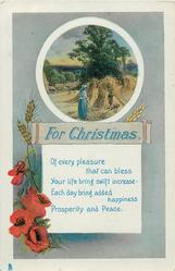 FOR CHRISTMAS  harvest inset above red poppies