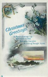 CHRISTMAS GREETINGS  seascape, forget-me-nots, horseshoe