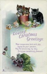 LOVING CHRISTMAS GREETINGS  2 kittens in flower-pot, one beside  violets & tulips