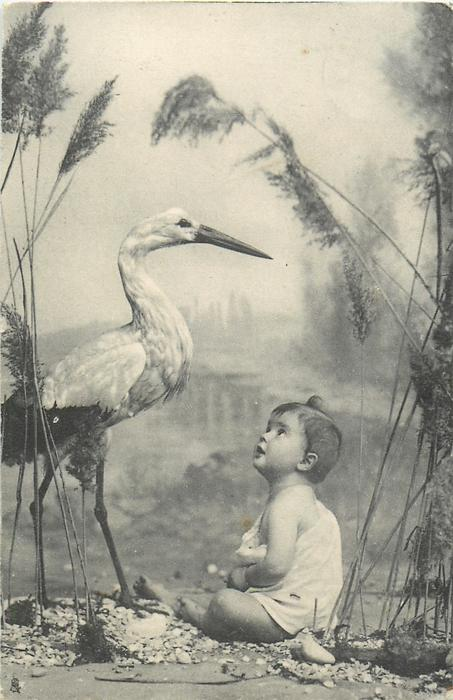 child sits on ground with both hands in his lap, looks up at stork to left, stork faces right