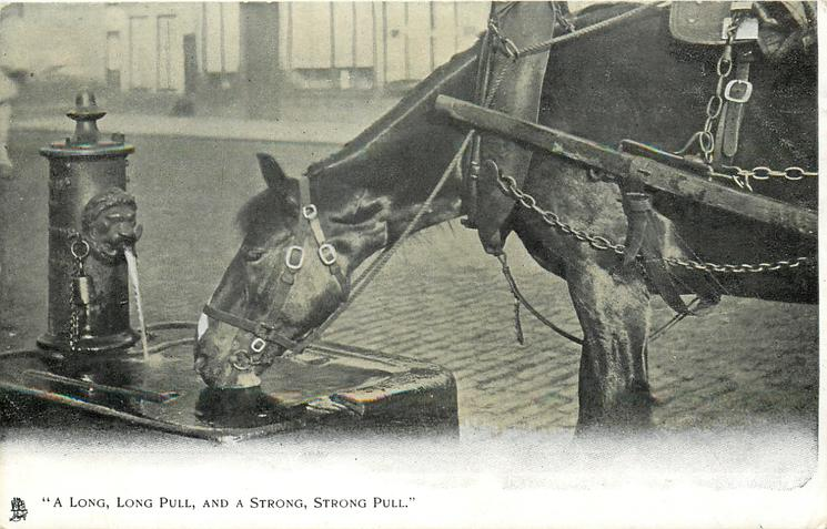 """A LONG, LONG PULL, AND A STRONG, STRONG PULL.""  horse drinking"