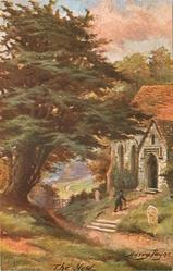 THE YEW