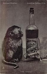 """SORE TEMPTED""  monkey & whisky bottle"
