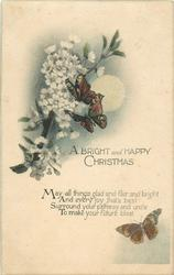 A BRIGHT AND HAPPY CHRISTMAS  butterflies, blossom