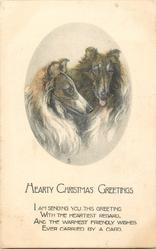 HEARTY CHRISTMAS GREETINGS  2 collies
