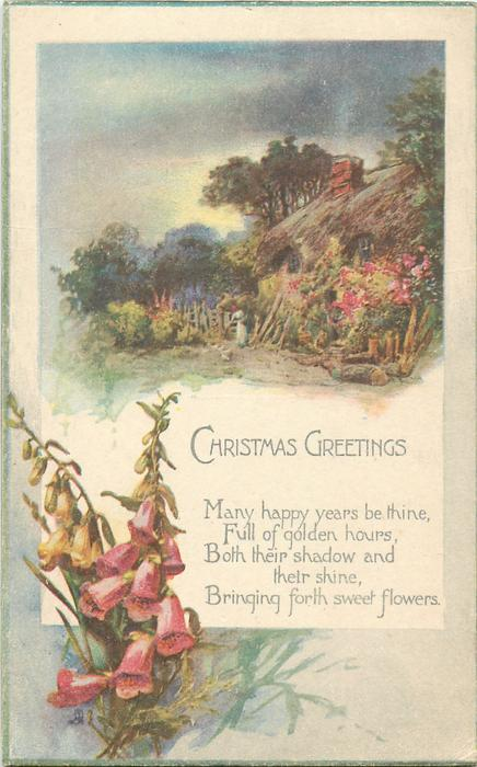 CHRISTMAS GREETINGS  cottage, foxgloves