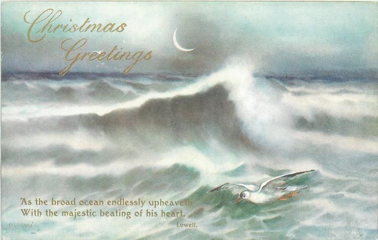 CHRISTMAS GREETINGS  waves, gull