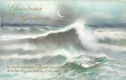 CHRISTMAS GREETINGS  waves, gull