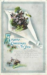 A HAPPY CHRISTMAS TO YOU  violets