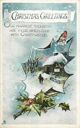 CHRISTMAS GREETINGS  rural snow scene, robin