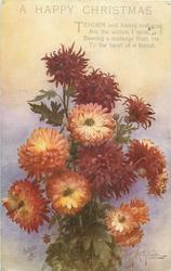 A HAPPY CHRISTMAS  many bronze/yellow chrysanthemums