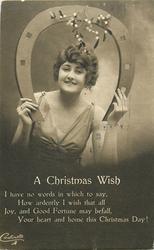 A CHRISTMAS WISH  girl under horseshoe