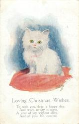 LOVING CHRISTMAS WISHES  white kitten sits up on red cushion