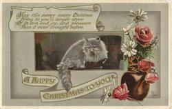 A HAPPY CHRISTMAS TO YOU  grey cat inset