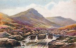 TAVY CLEAVE, DARTMOOR  fisherman to left, stream with large rocks centre