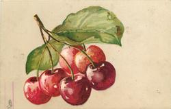 six cherries