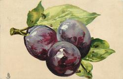 three purple plums