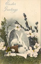 two white bunnies in an basket with egg around, pussy willows and white flowers