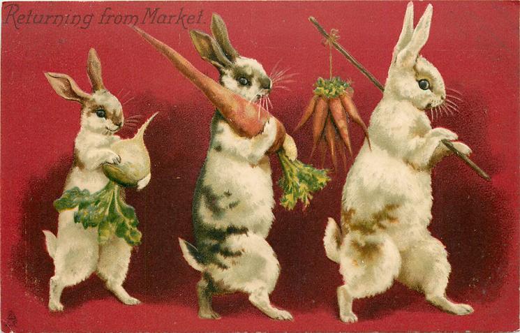 RETURNING FROM MARKET  rabbits