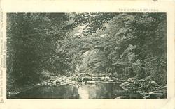 CO. WICKLOW   THE DARGLE BRIDGE