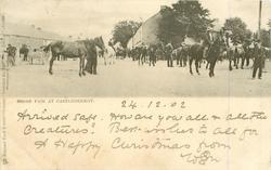 CO. KILDARE   HORSE FAIR AT CASTLEDERMOT