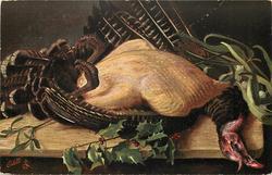 TURKEY  fully plucked bird lying left/right