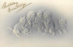 five cats, four looking at a letter