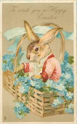 TO WISH YOU A HAPPY EASTER  dressed rabbit in basket of forget-me nots