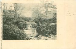 THOLT-E-WILL BRIDGE