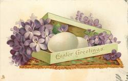 EASTER GREETINGS  violets & two white eggs in box