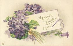 A HAPPY EASTER TO YOU  bouquets of violets