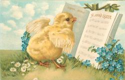 EASTER MORN, A JOYOUS EASTER  chick looks at open hymn book, forget-me-nots