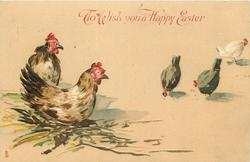 TO WISH YOU A HAPPY EASTER  two hens left, three distantly right