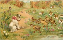 A HAPPY EASTER-TIDE  dog left with red bow and bone in front, many ducklings approach