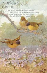 A PEACEFUL EASTER  three yellow/brown birds, violets