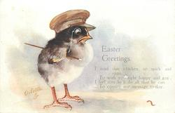 EASTER GREETING  chick in soldier's cap, monacle
