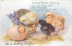 LOVING EASTER GREETING  three chicks observe another hatching, violets, basket & egg left