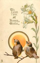 TO WISH YOU A HAPPY EASTER  two birds