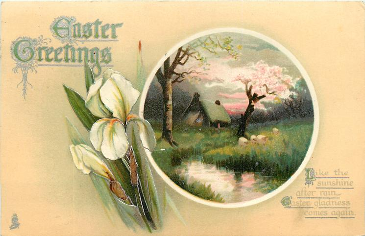 EASTER GREETINGS  rural insert, white iris