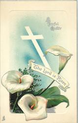 THE LORD IS RISEN in banner, three calla lilies