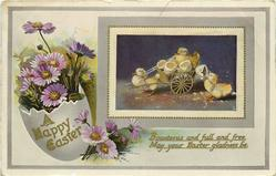 A HAPPY EASTER  duckling pulls cart, egg &  purple-white daisies