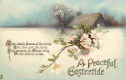 A PEACEFUL EASTERTIDE  cottage, rose blossom