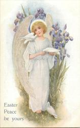 EASTER PEACE BE YOURS  angel, three doves, purple iris