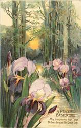 A PEACEFUL EASTERTIDE  iris, stream, trees